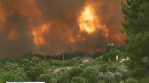 Raging forest fires prove deadly in Portugal